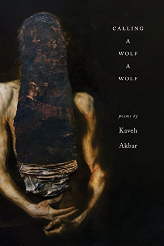 Calling a Wolf a Wolf book image