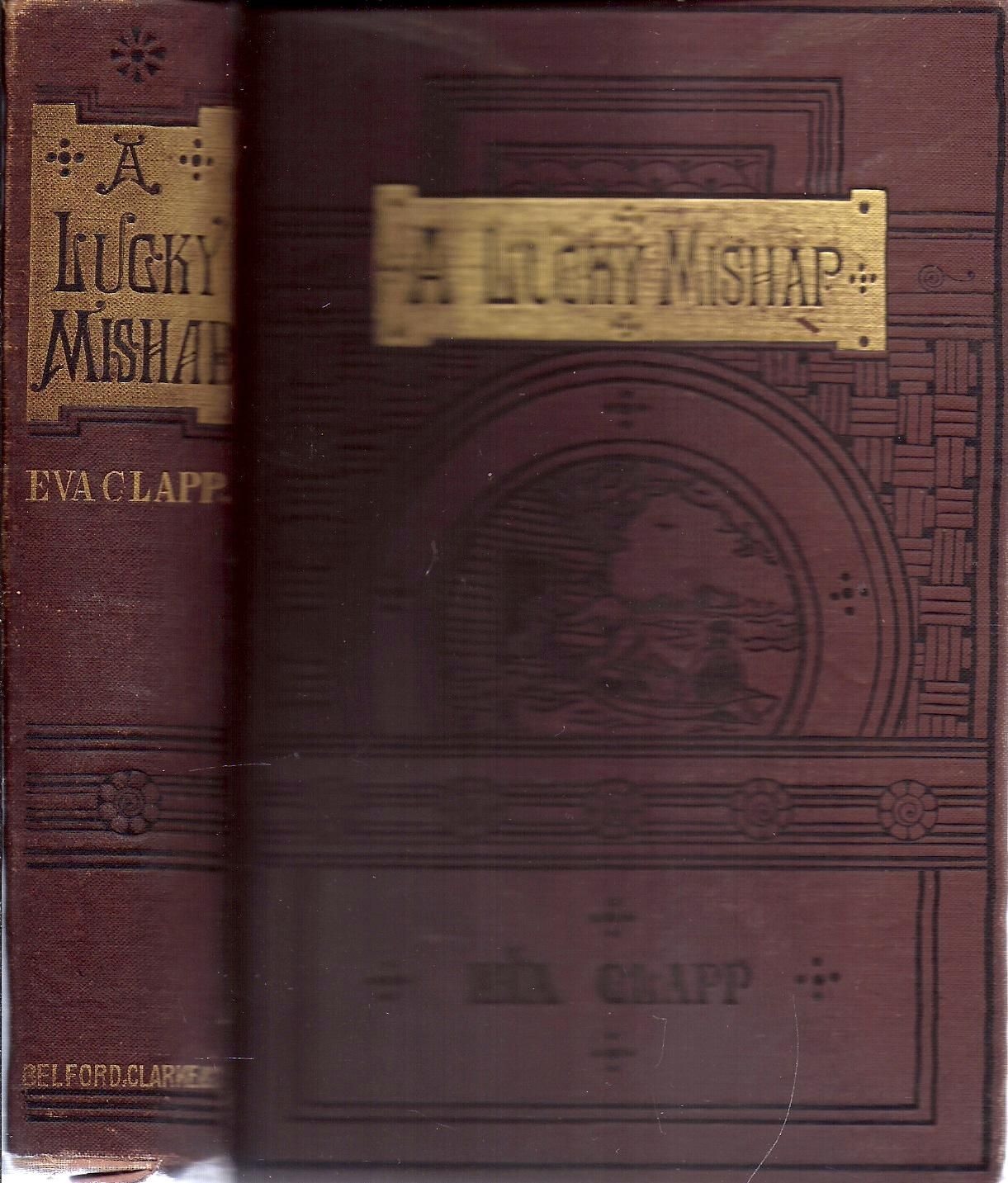 A Lucky Mishap book image