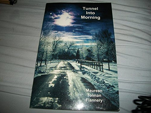 Tunnel into Morning book image